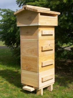 Beehives: A backyard beekeeping hive alternative